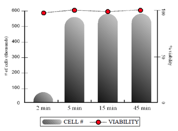 Accutase Cell Viability